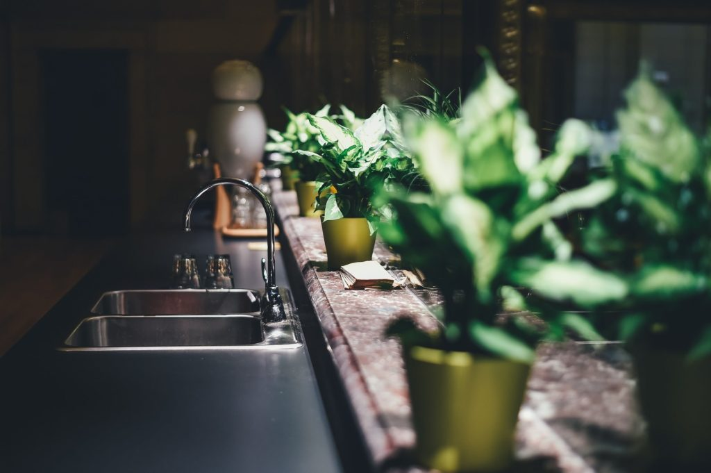 Kitchen Sink With Plants in Background